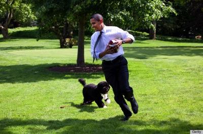 8 22 13 Obama for Pibbles