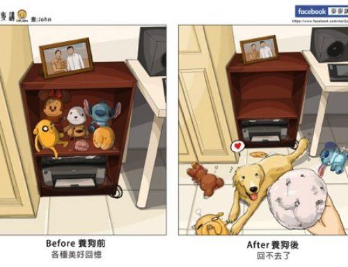 【写真】9つのイラストで表現 犬との生活 Bofore After