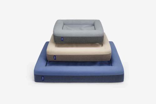 Casper dog mattress all