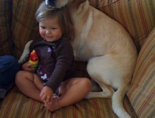 【写真】子供と犬 最高のパートナー