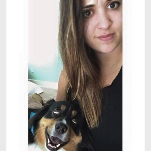 Funny dog 11