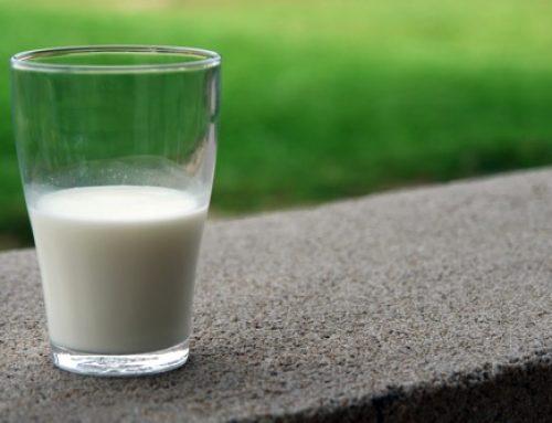 【雑学】なぜ人間は牛の乳が飲めるのか?なぜ犬は飲めないのか?