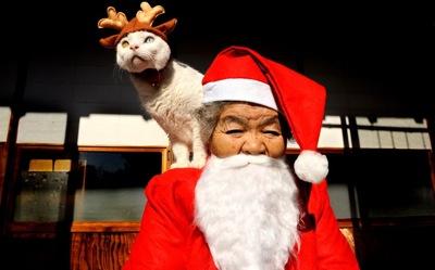 Santa suit 2407629k